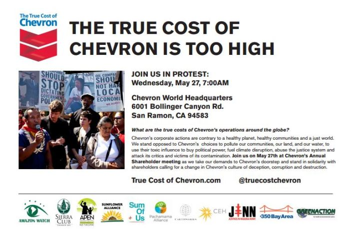 chevron shareholder flyer